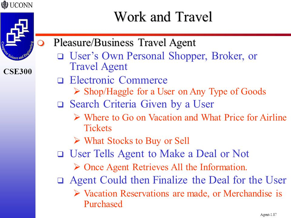 Work and Travel Pleasure/Business Travel Agent