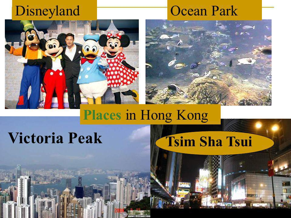 Disneyland Ocean Park Places in Hong Kong Victoria Peak Tsim Sha Tsui