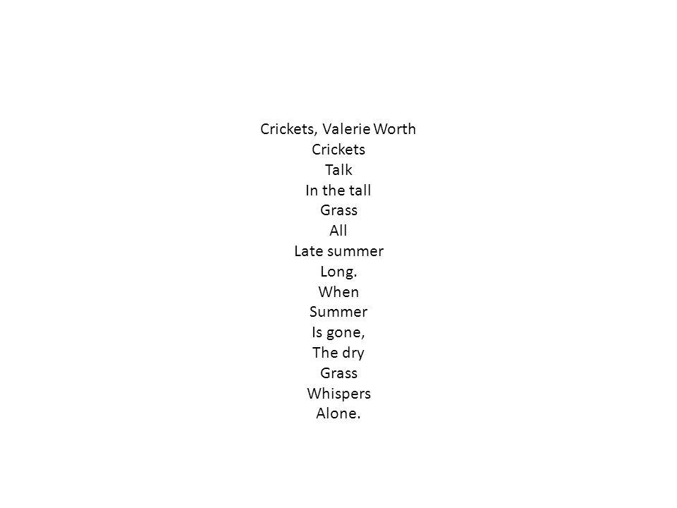 Crickets, Valerie Worth
