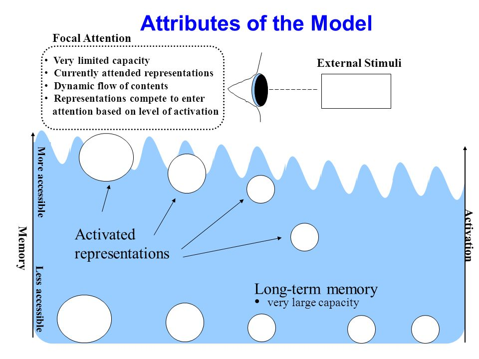 Attributes of the Model