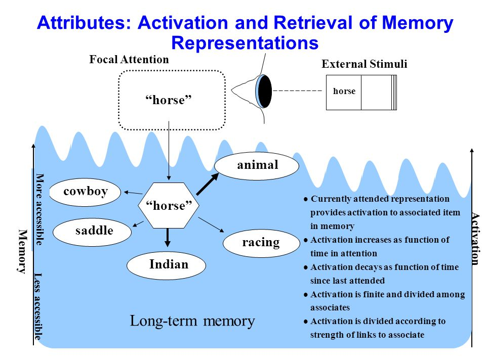 Attributes: Activation and Retrieval of Memory Representations