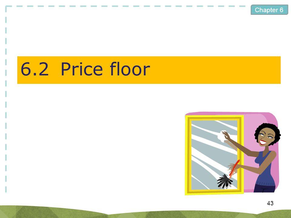 6.2 Price floor