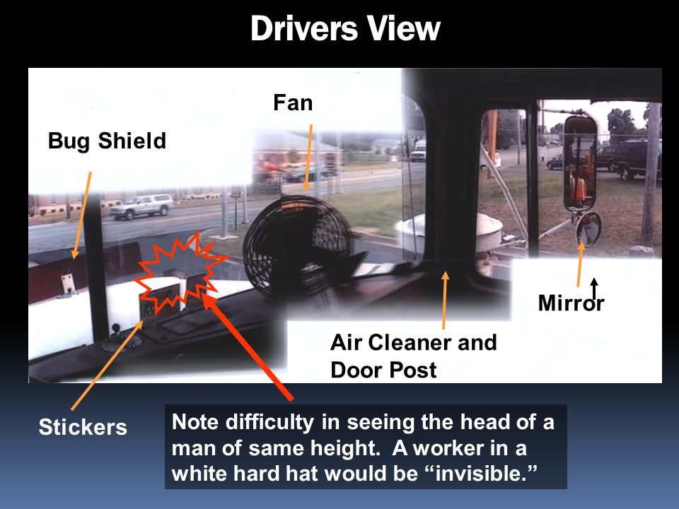 Drivers View Fan Bug Shield Mirror Air Cleaner and Door Post Stickers