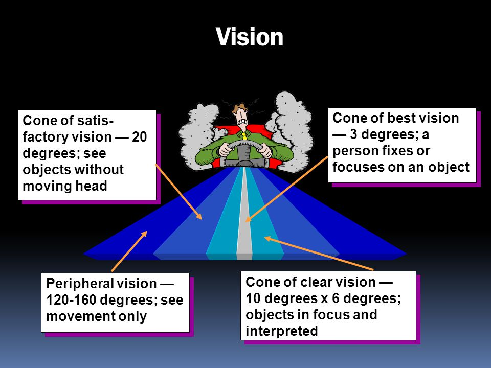 Vision Cone of satis-factory vision — 20 degrees; see objects without moving head.