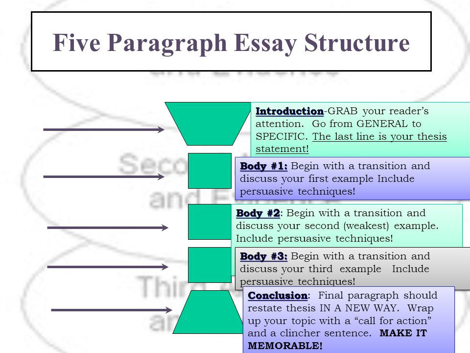perfect essay structure Seven essential tips for writing the perfect essay it's april crunch-time your ideas may be fascinating but if your structure is all wrong.