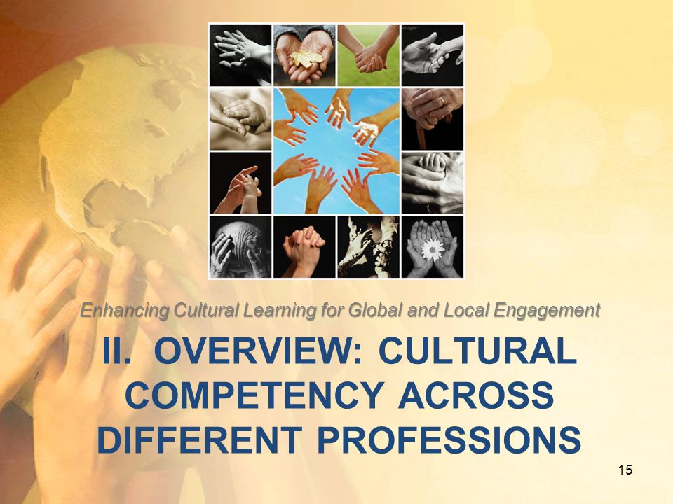 II. Overview: cultural competency across different professions