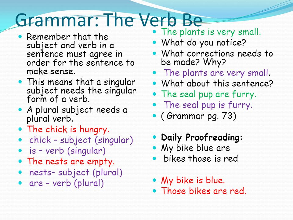 Grammar: The Verb Be The plants is very small.