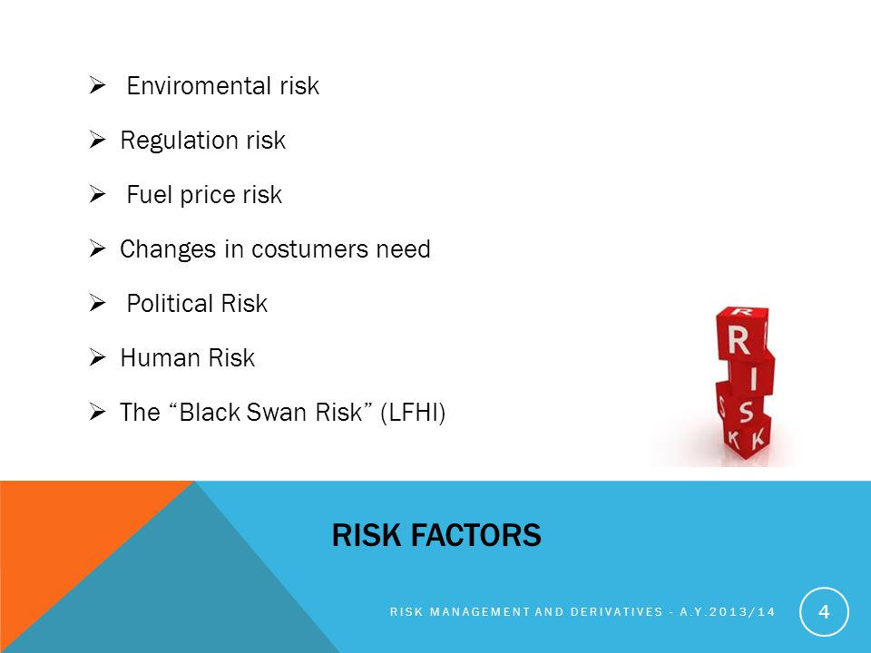 Risk factors Enviromental risk Regulation risk Fuel price risk