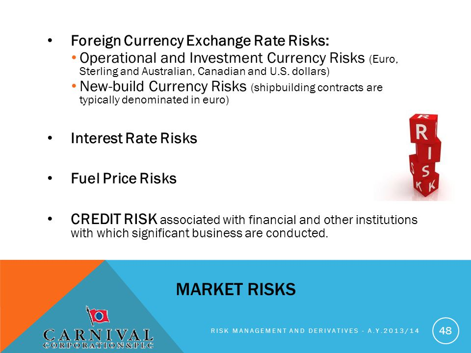Market Risks Foreign Currency Exchange Rate Risks: