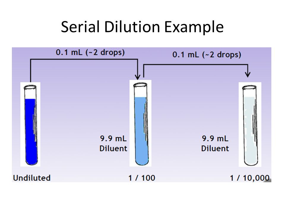 Serial Dilution Example