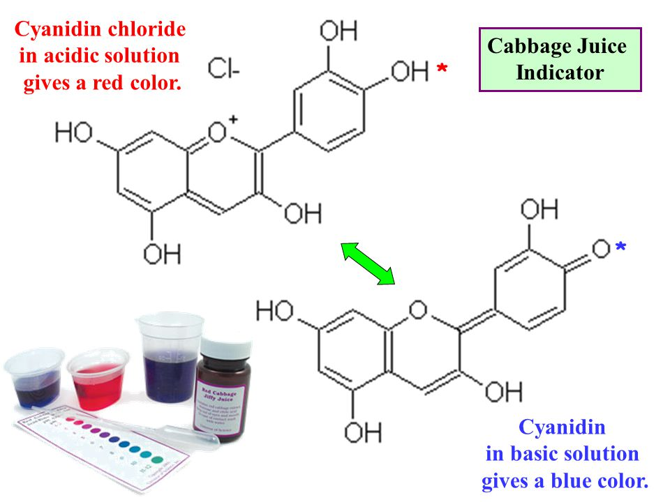 Cyanidin chloride in acidic solution. gives a red color. Cabbage Juice. Indicator. * * Cyanidin.