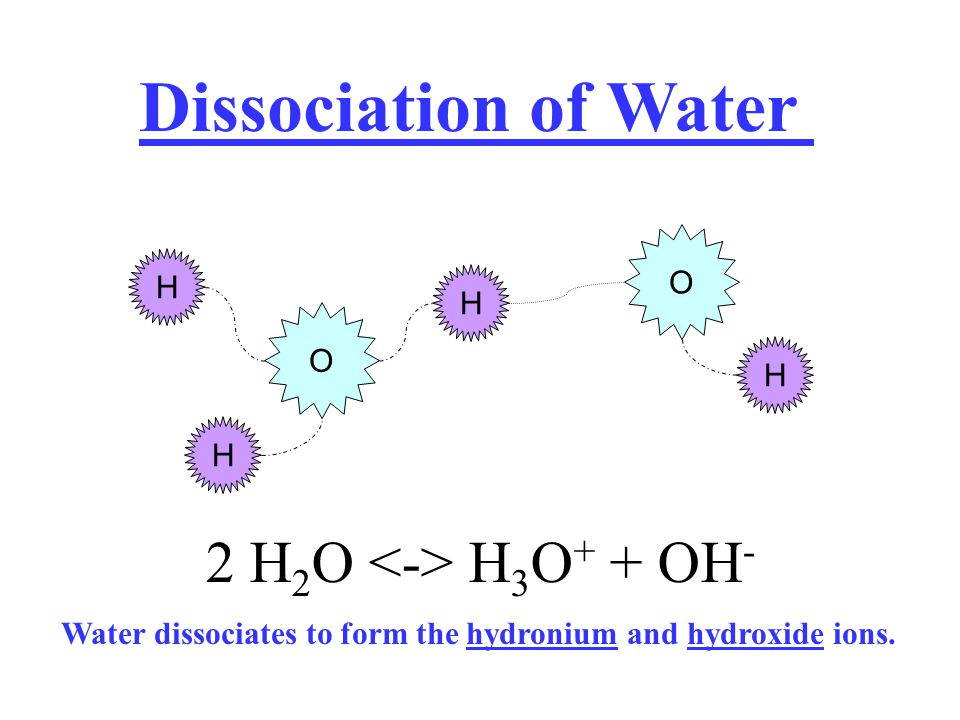 Dissociation of Water 2 H2O <-> H3O+ + OH- O H H O H H