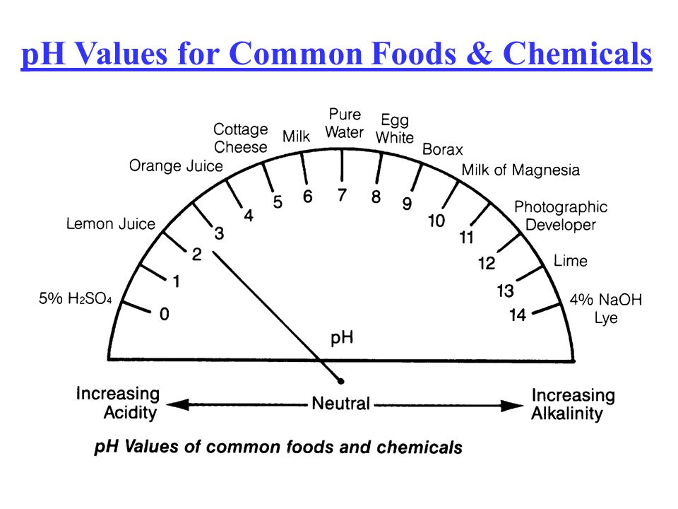 pH Values for Common Foods & Chemicals