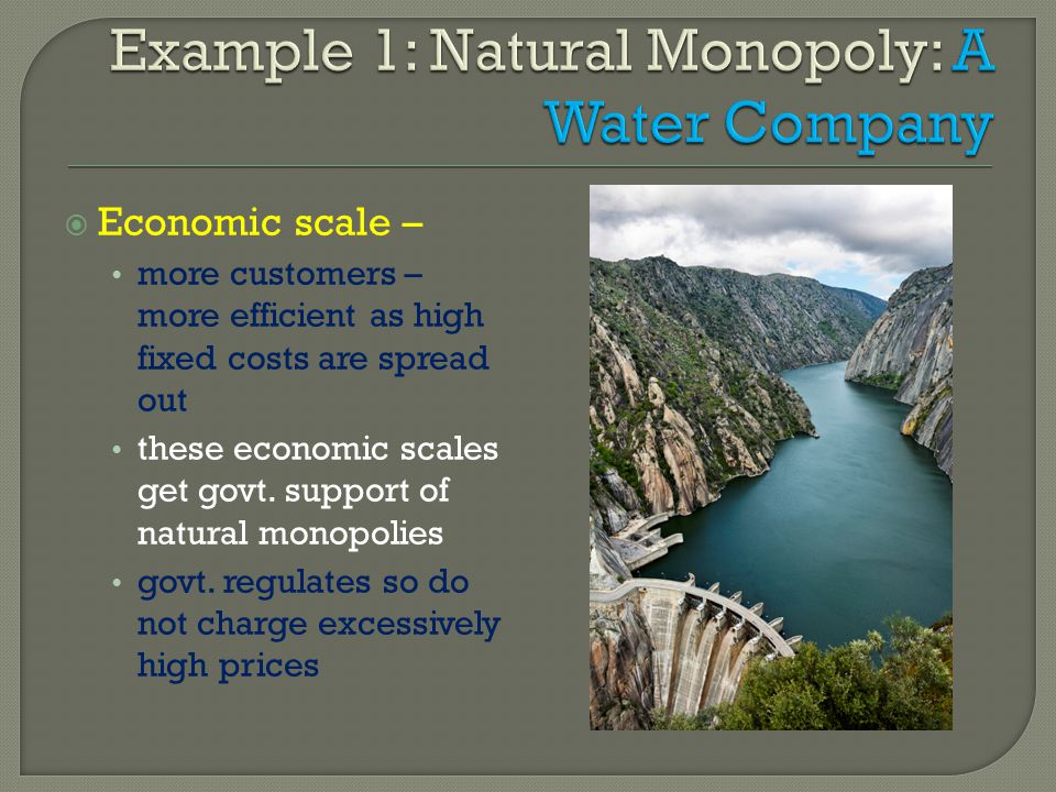 Example 1: Natural Monopoly: A Water Company
