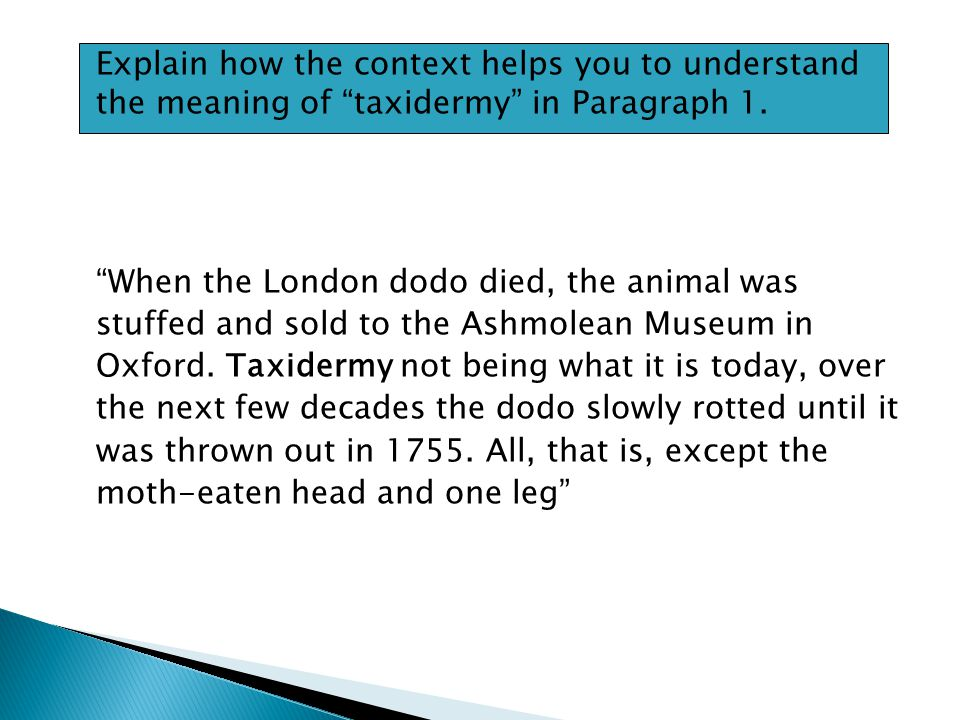 Explain how the context helps you to understand the meaning of taxidermy in Paragraph 1.