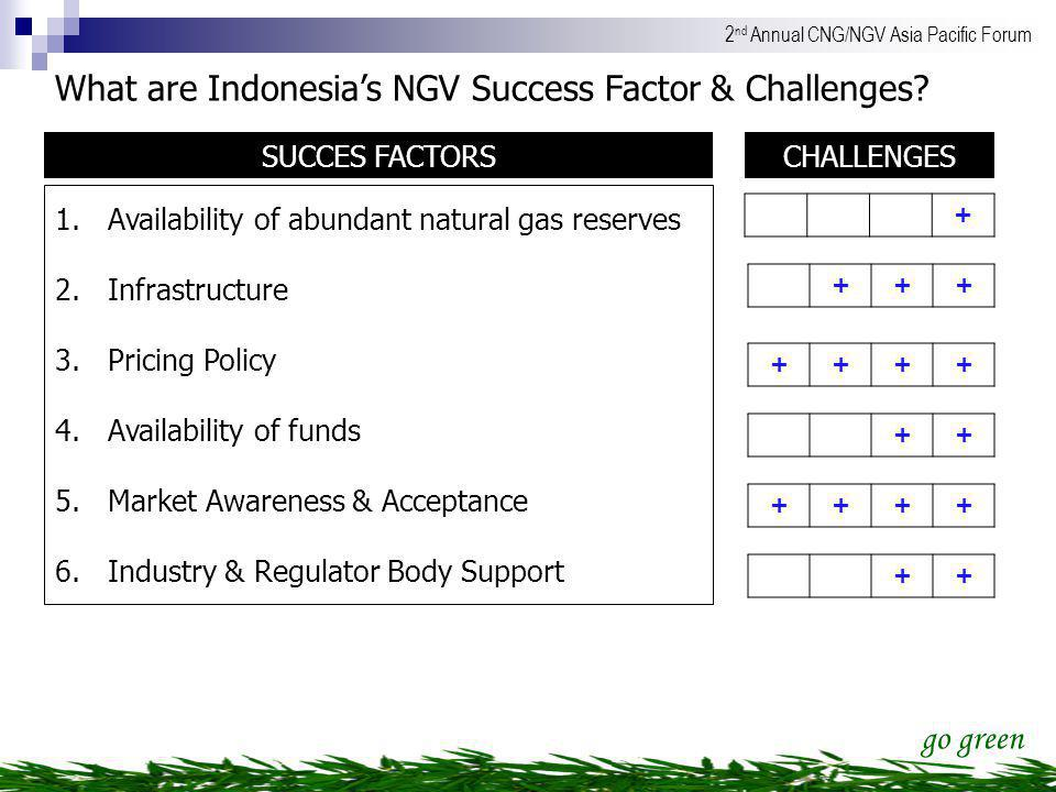 What are Indonesia's NGV Success Factor & Challenges