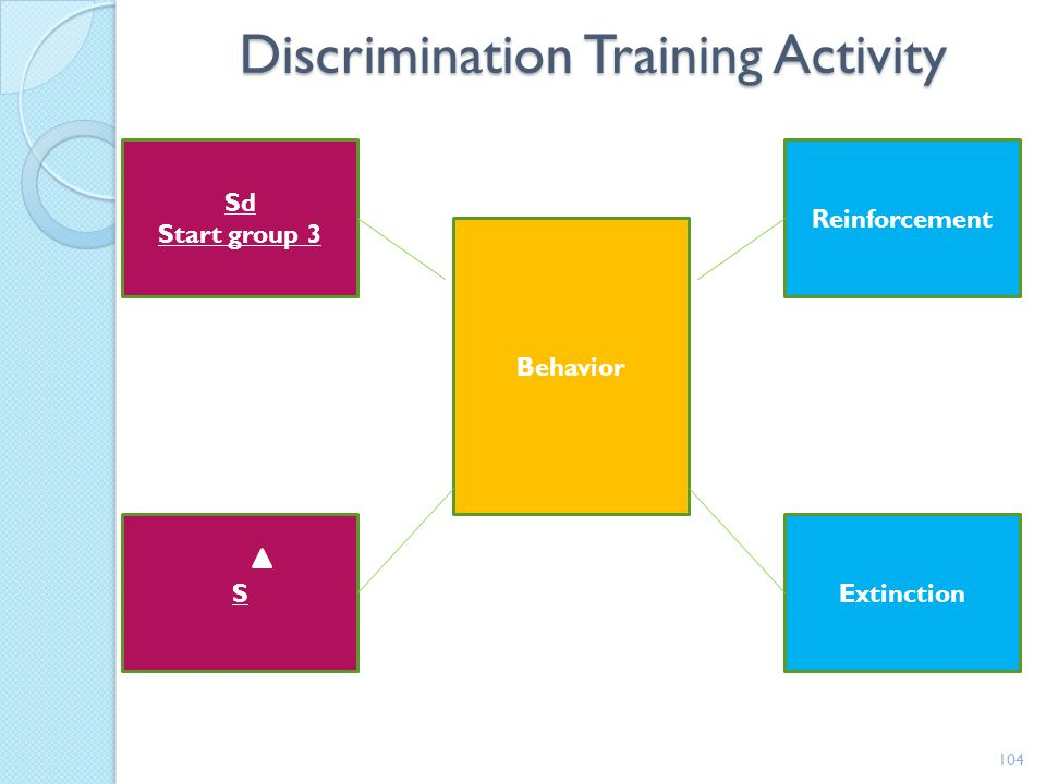 Discrimination Training Activity
