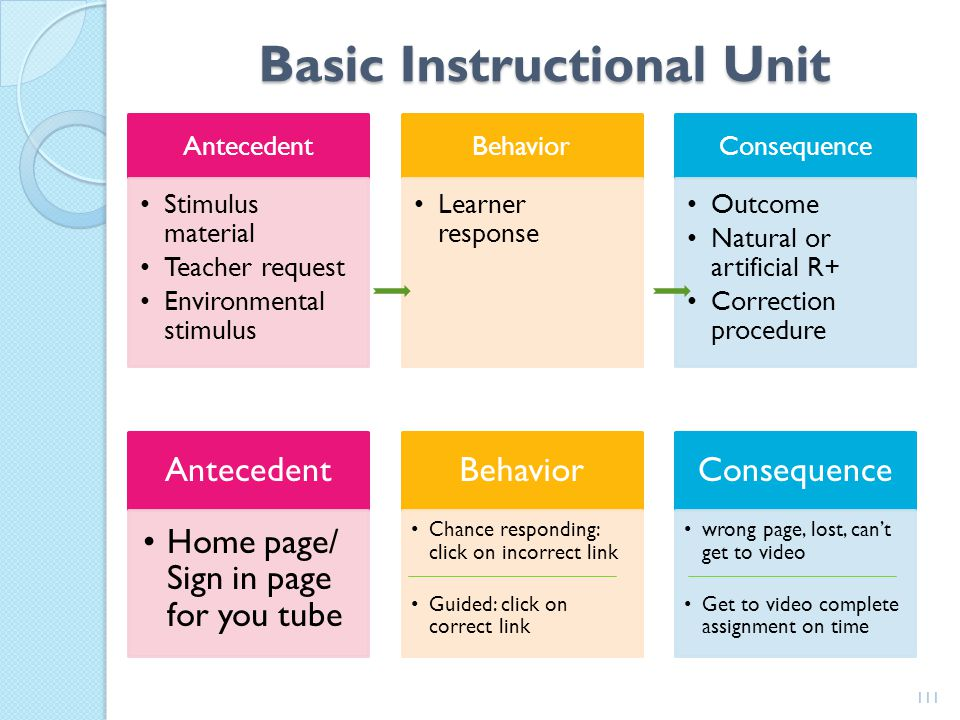 Basic Instructional Unit
