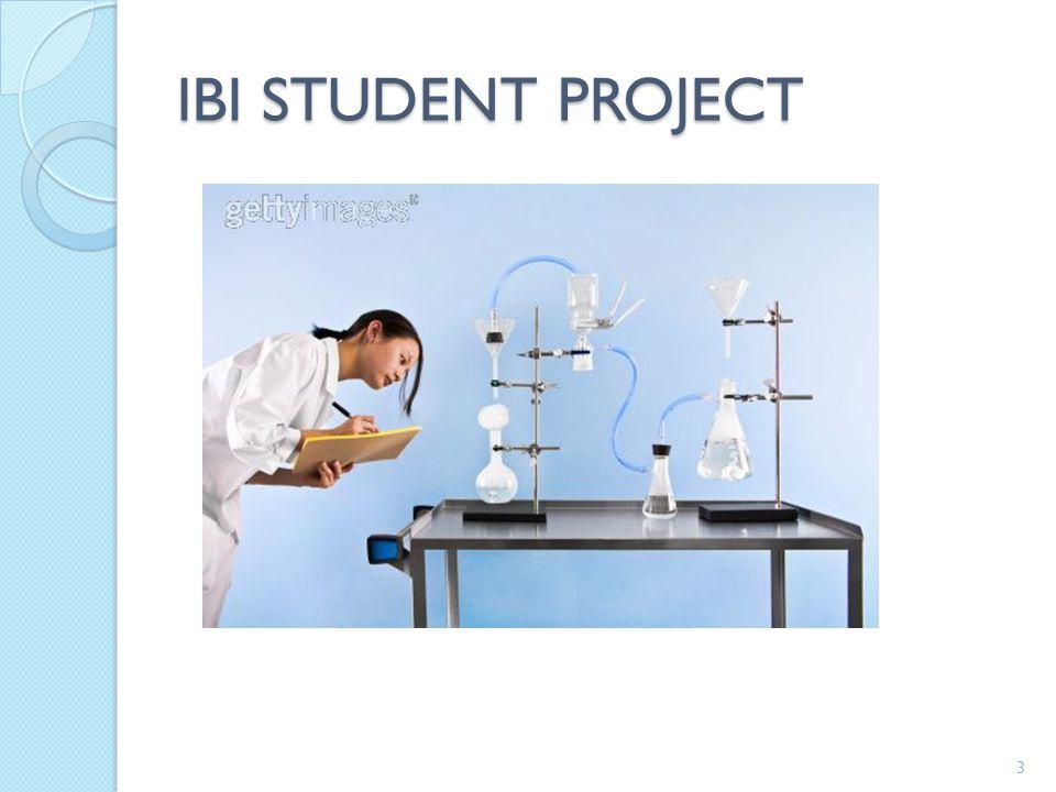 IBI STUDENT PROJECT