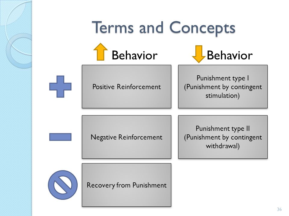 Terms and Concepts Behavior Behavior Positive Reinforcement