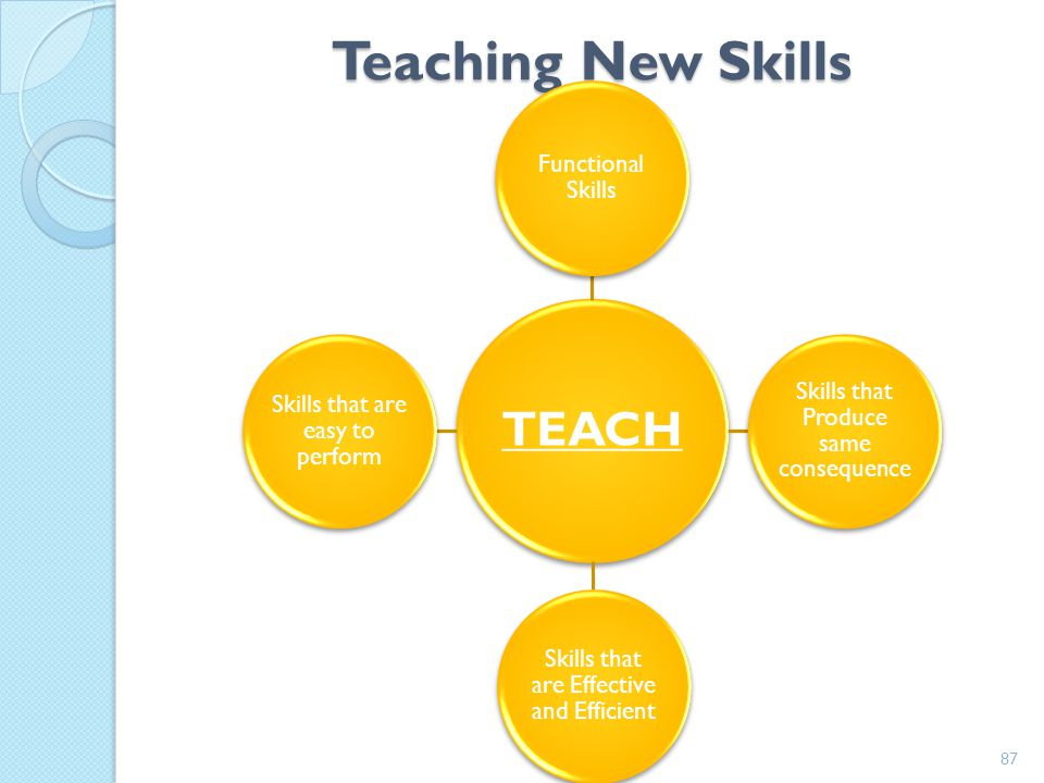 Teaching New Skills TEACH Functional Skills