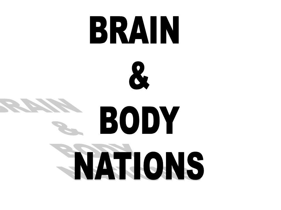 BRAIN & BODY NATIONS