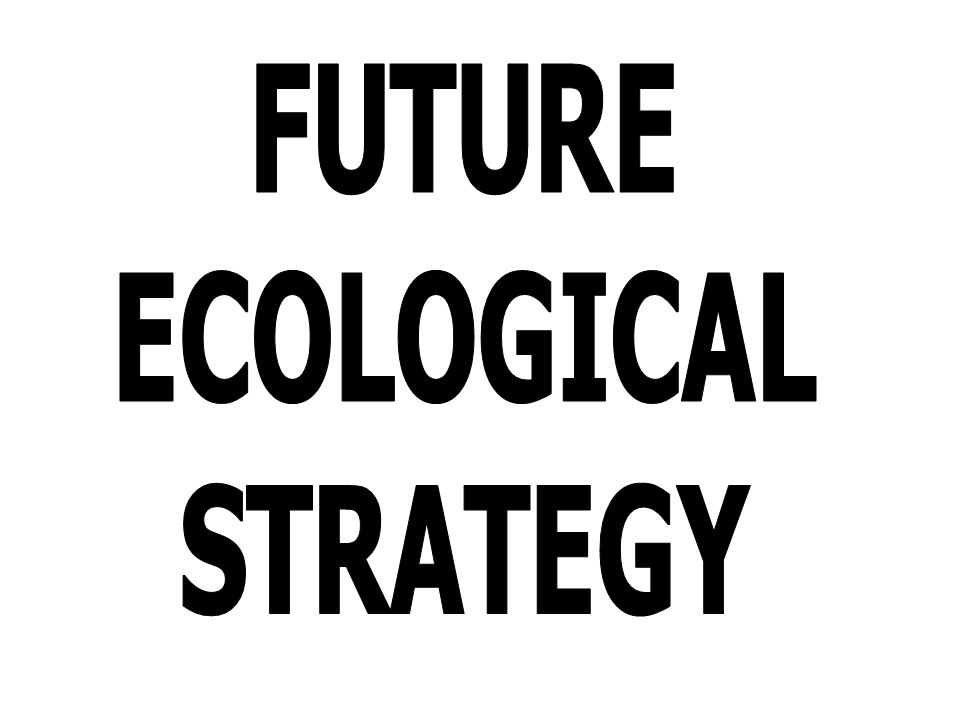 FUTURE ECOLOGICAL STRATEGY
