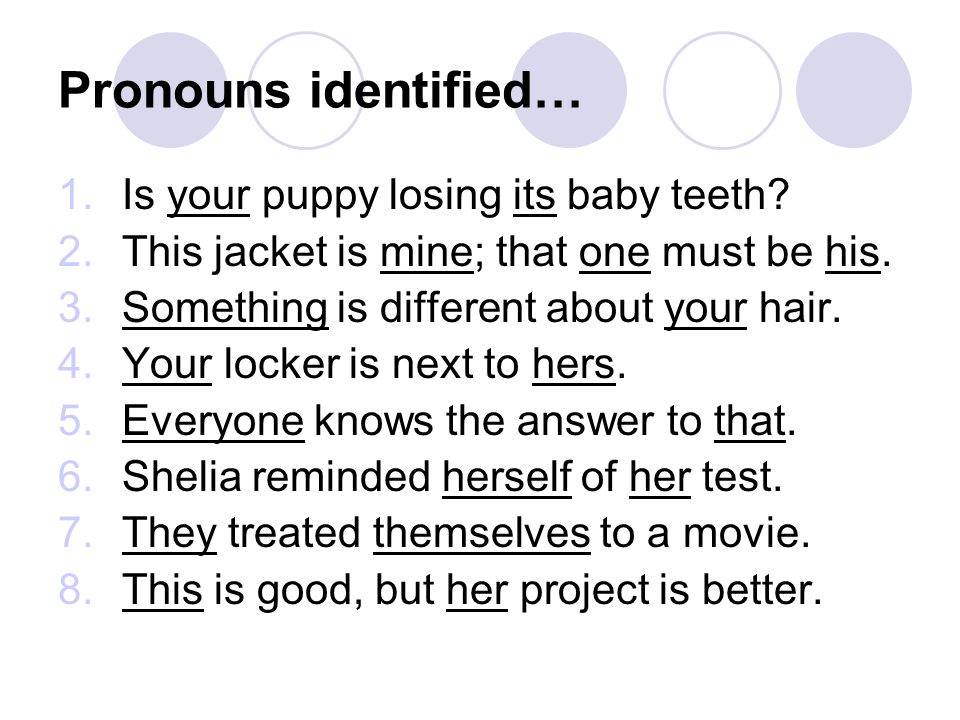 Pronouns identified… Is your puppy losing its baby teeth