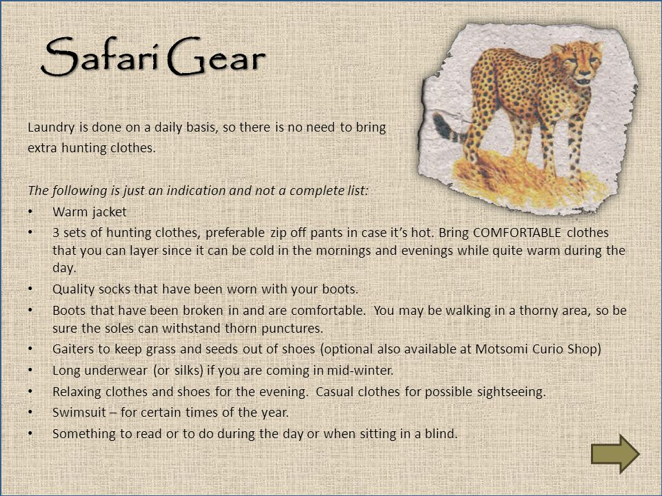 Safari Gear Laundry is done on a daily basis, so there is no need to bring. extra hunting clothes.