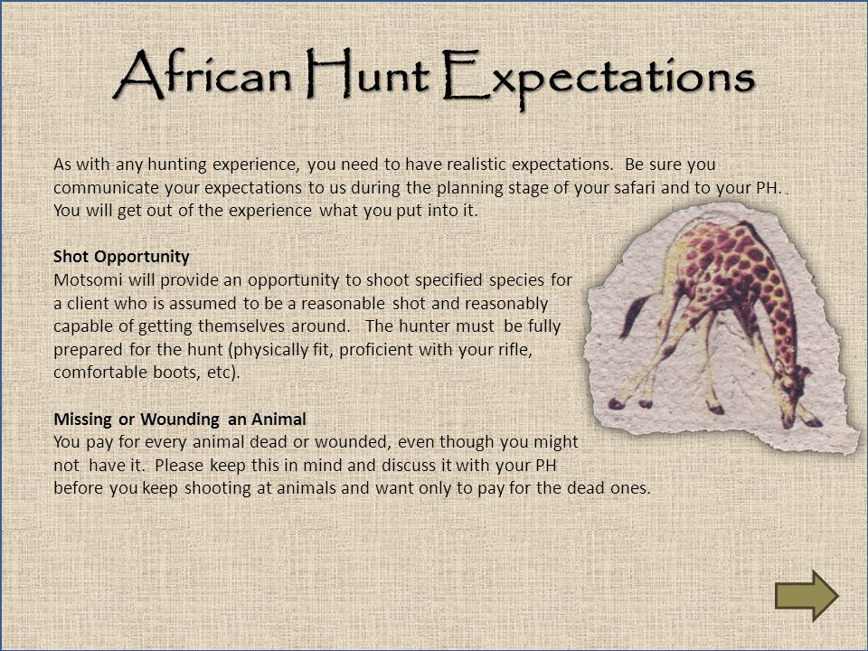 African Hunt Expectations