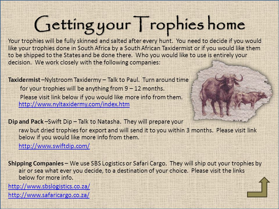 Getting your Trophies home