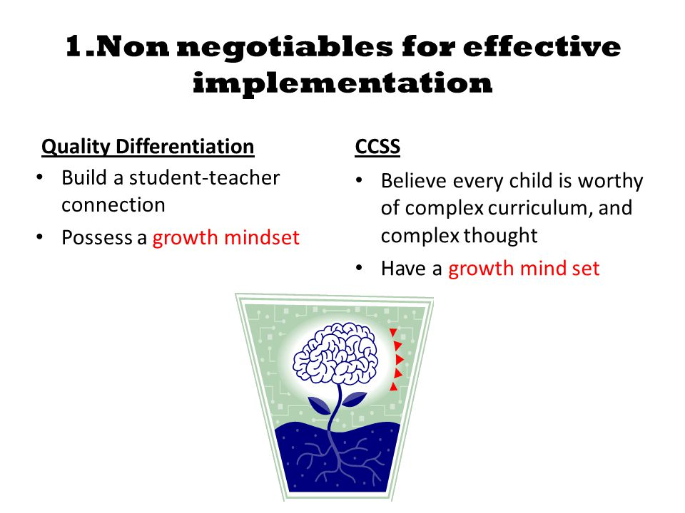 1.Non negotiables for effective implementation