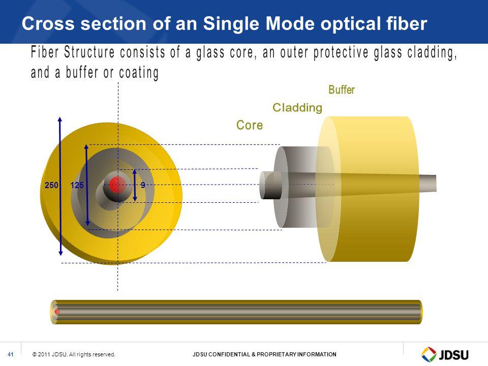 Cross section of an Single Mode optical fiber