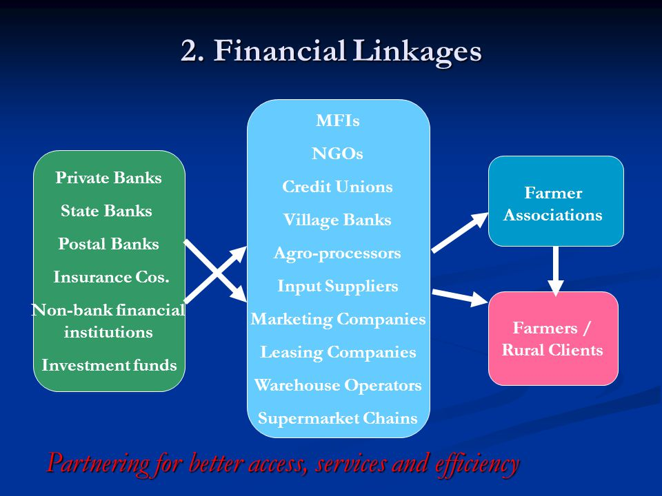 Non-bank financial institutions Farmers / Rural Clients
