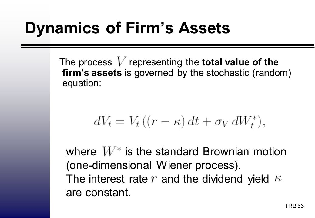 Dynamics of Firm's Assets
