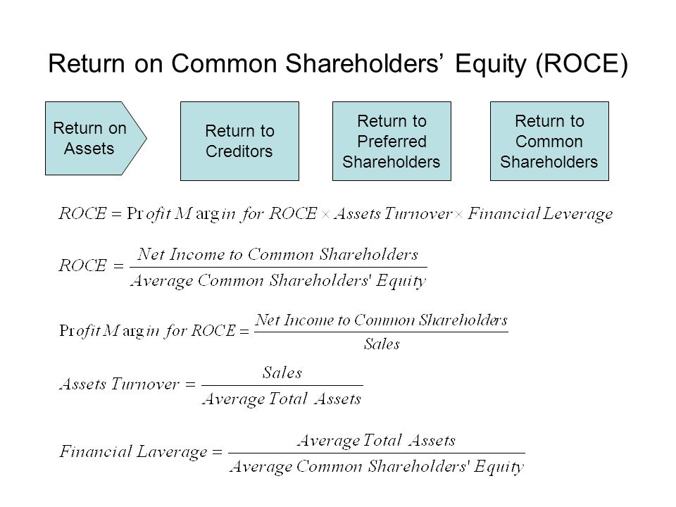 Return on Common Shareholders' Equity (ROCE)