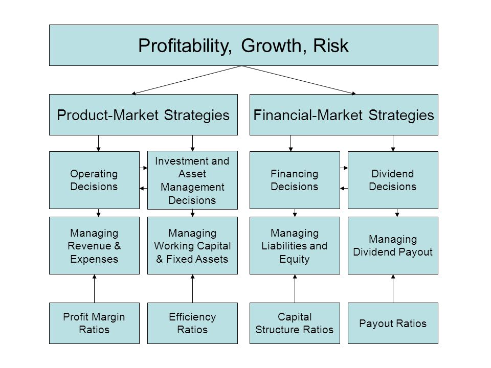 Profitability, Growth, Risk