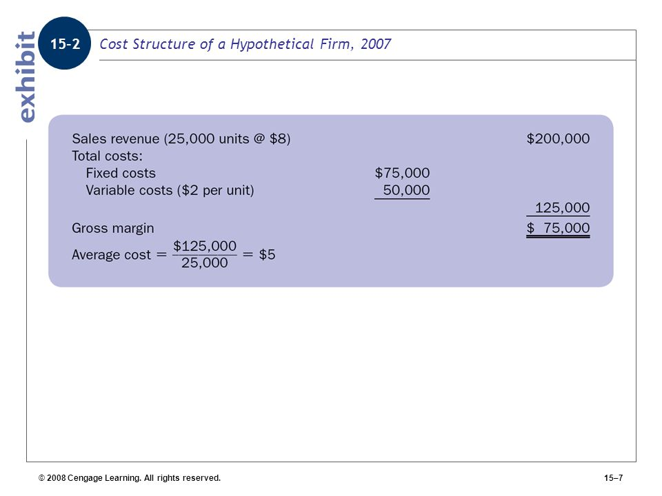 Cost Structure of a Hypothetical Firm, 2007