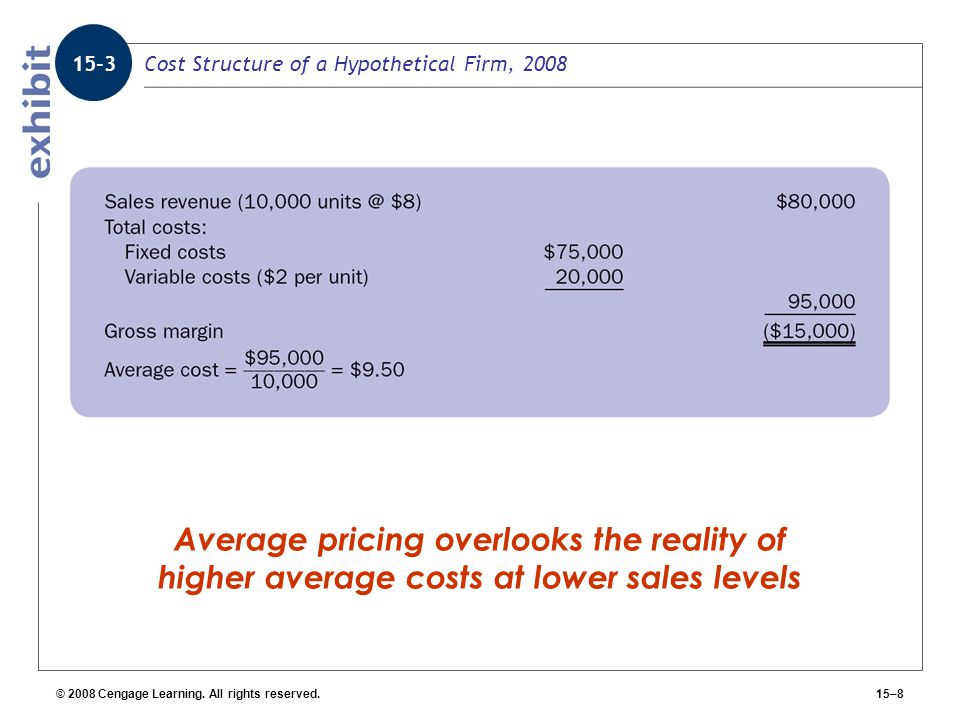 Cost Structure of a Hypothetical Firm, 2008