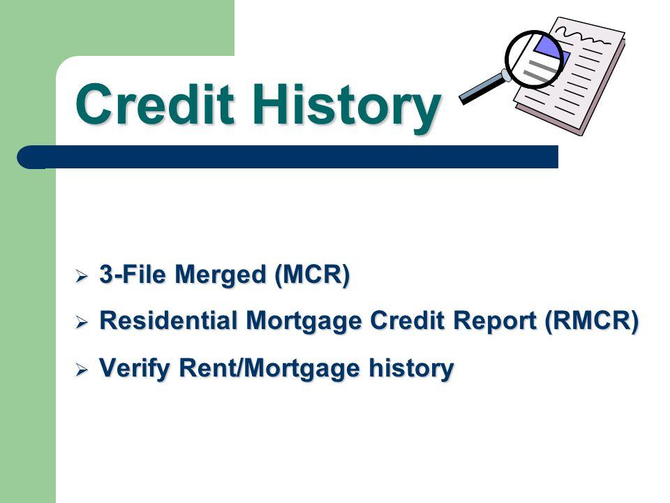 Credit History 3-File Merged (MCR)