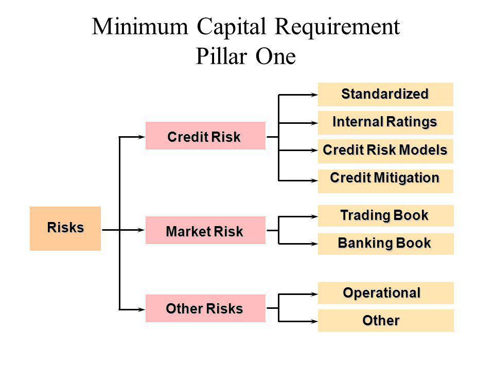 Minimum Capital Requirement Pillar One