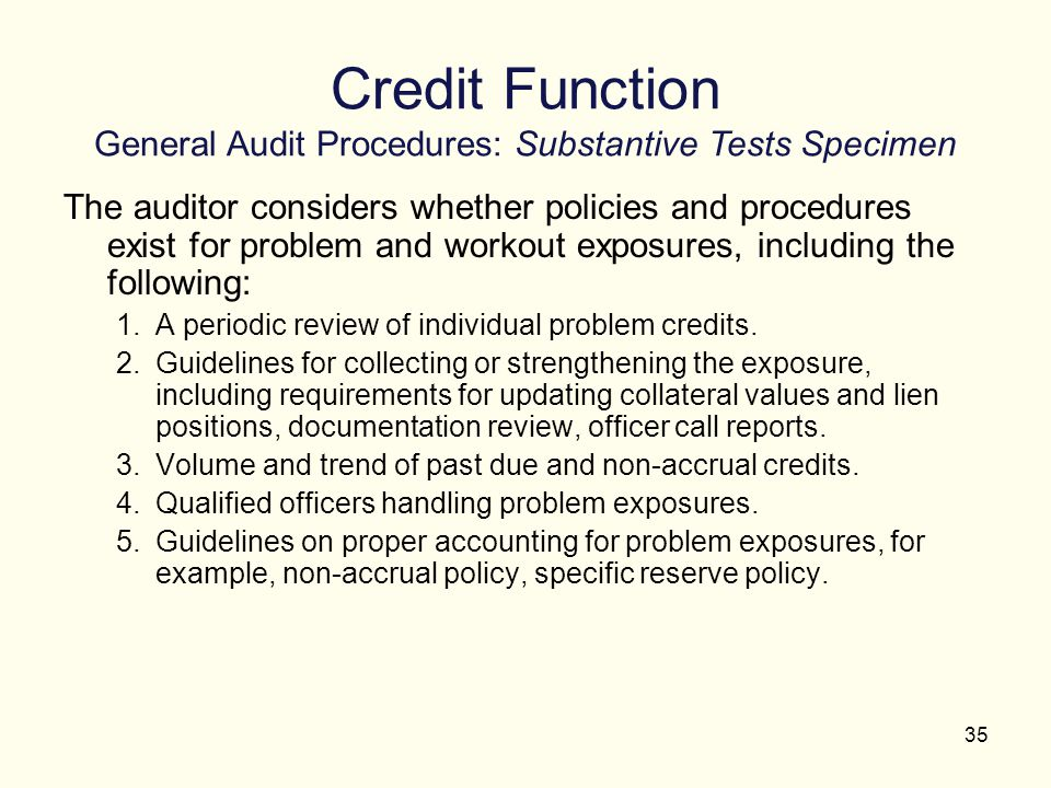 Credit Function General Audit Procedures: Substantive Tests Specimen