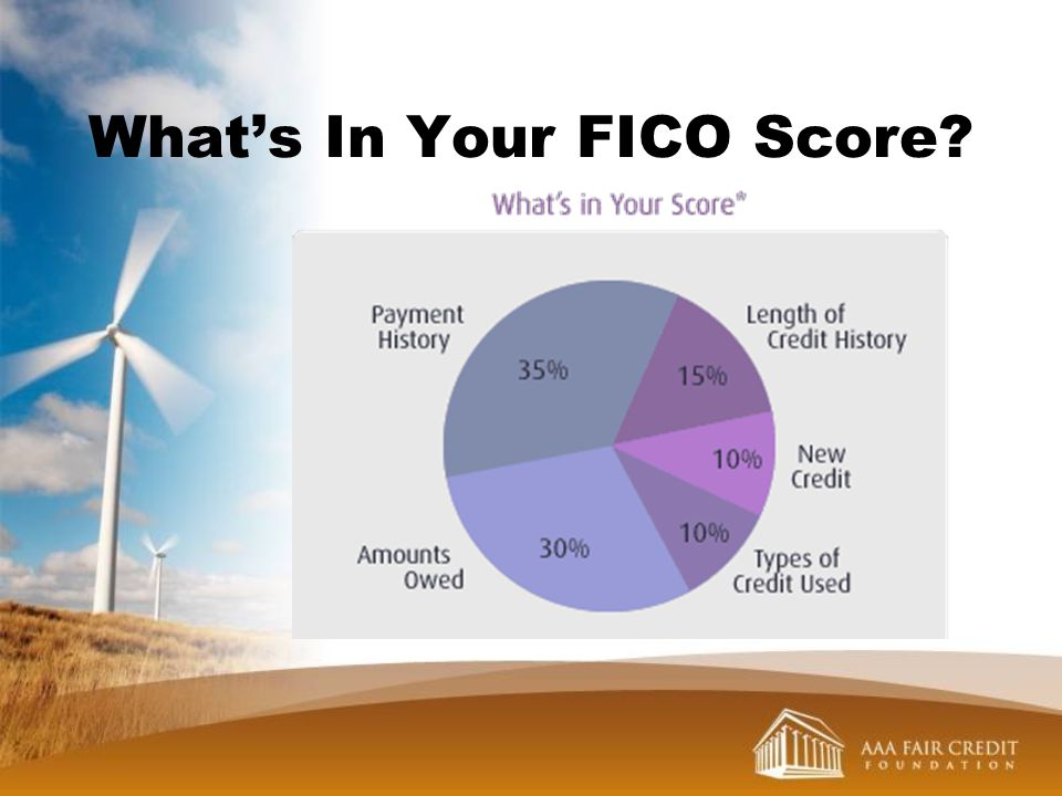 What's In Your FICO Score