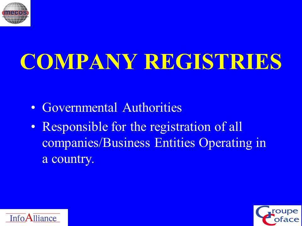 COMPANY REGISTRIES Governmental Authorities
