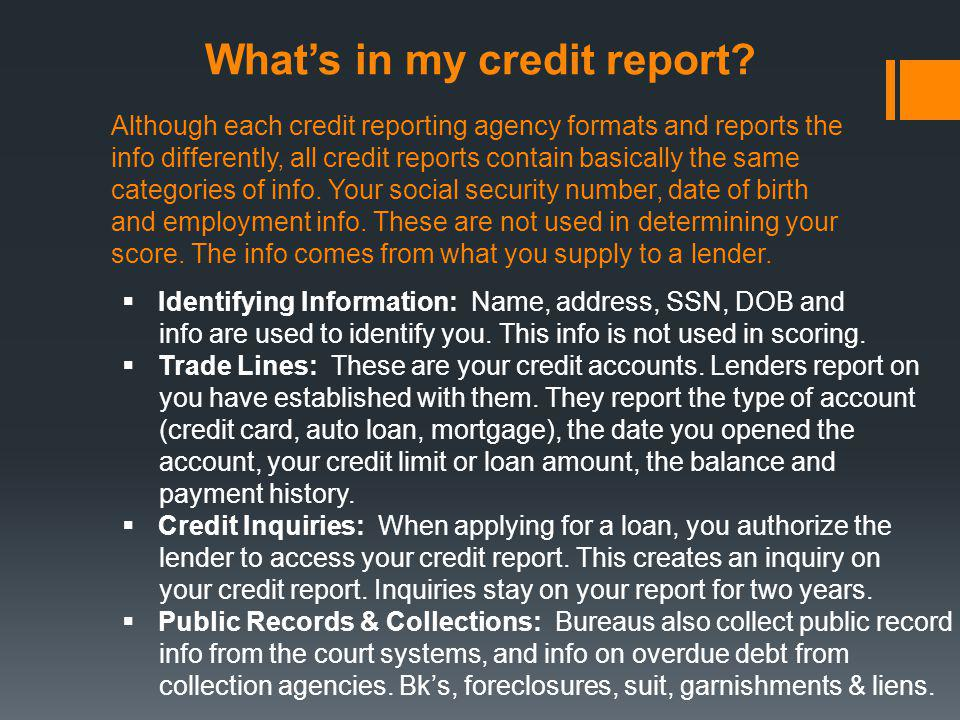 What's in my credit report