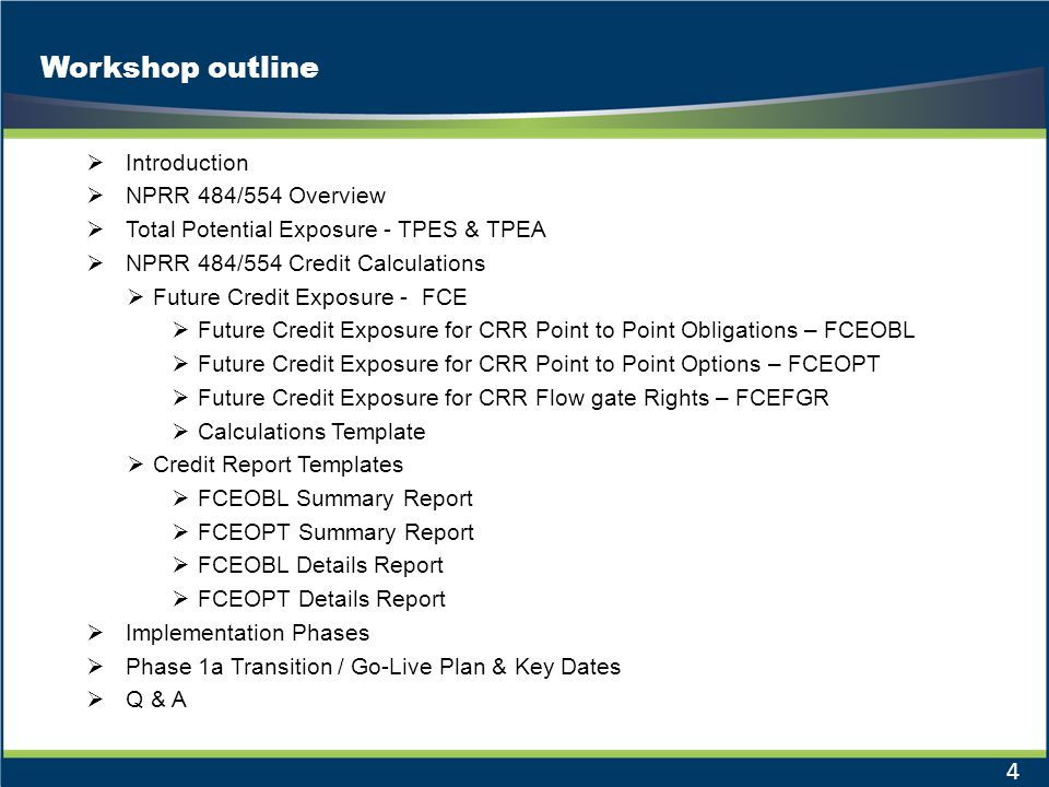 Workshop outline Introduction NPRR 484/554 Overview