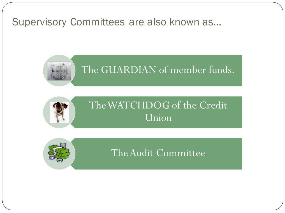 Supervisory Committees are also known as…