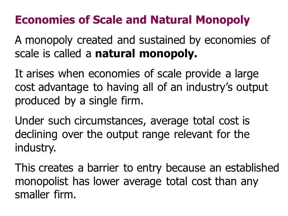 Economies of Scale and Natural Monopoly