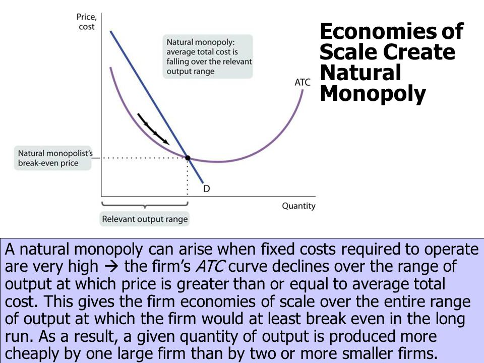Economies of Scale Create Natural Monopoly