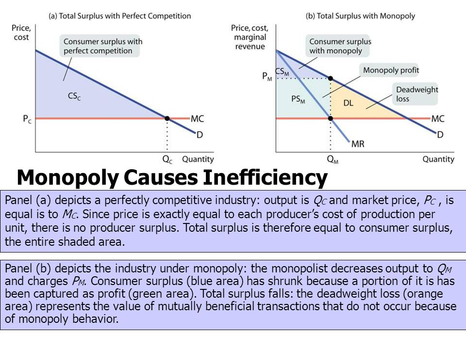Monopoly Causes Inefficiency